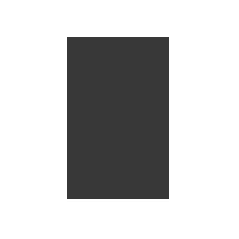 spirited-group